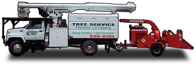 Dogwood Tree Service